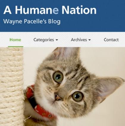 Blog: Wayne Pacelle