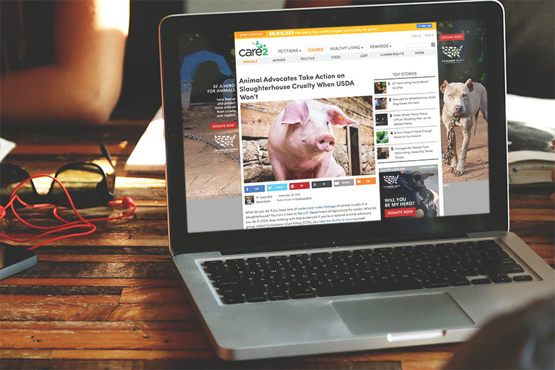 Example of display media advertising on a laptop