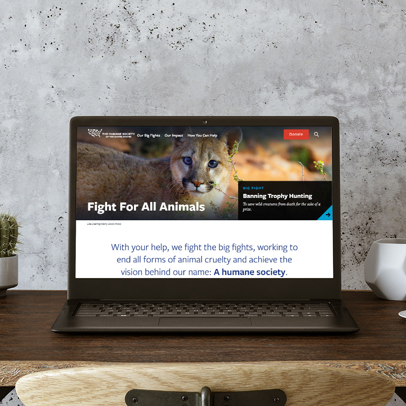 Laptop computer with HSUS website